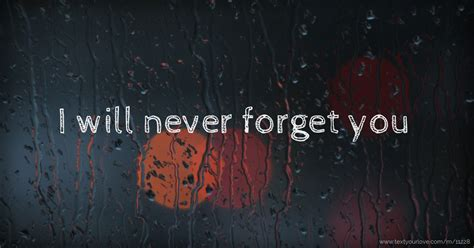 I will never forget you | Text Message by Naiem Rahman