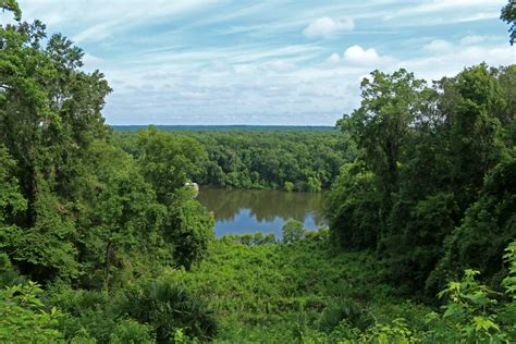 Torreya State Park | Outdoor Project