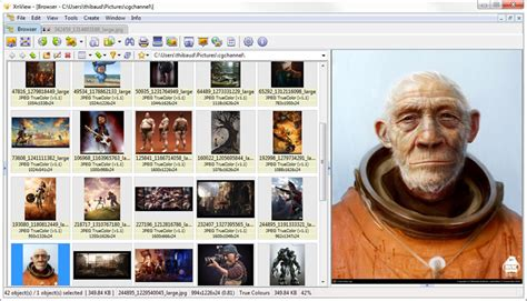 11 Free Alternatives Image and Photo Organizer For