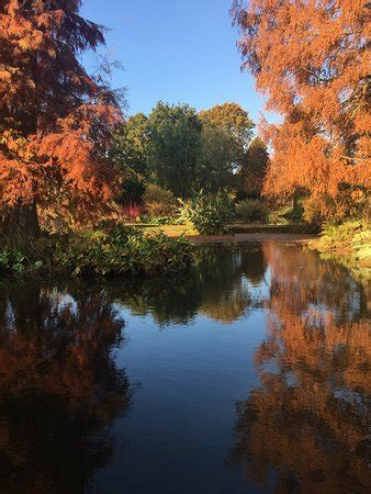 The Beth Chatto Gardens (Colchester) - Aktuelle 2019